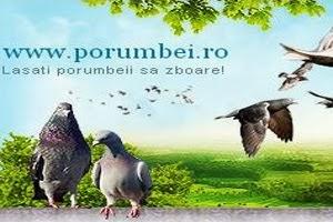 PORUMBEI.RO
