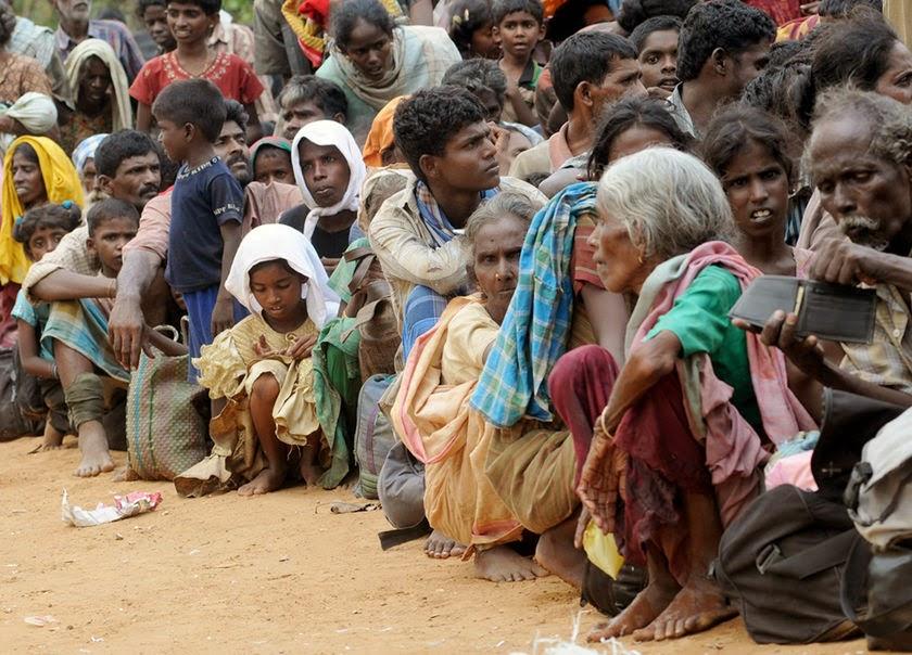 People sri lankan tamil Tamil Genetics