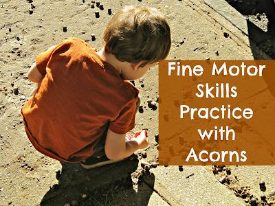 Fine Motor Skills Practice with Acorns