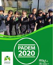 PADEM 2020