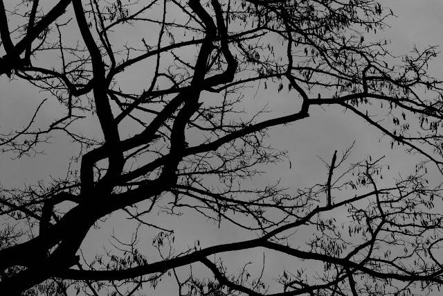 Fotografia abstrakcyjna. Piktorialny obraz miasta. Ruda Slaska. fot. Lukasz Cyrus, Katowice