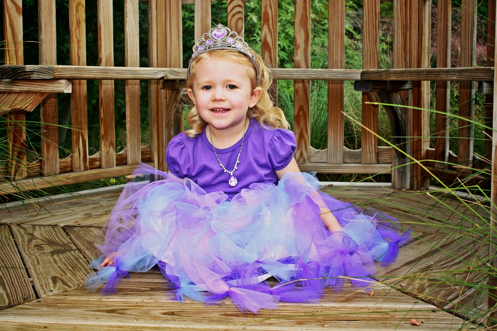 DIY Costume Sofia the First  sc 1 st  The Intentional Momma & DIY Costume: Sofia the First | The Intentional Momma