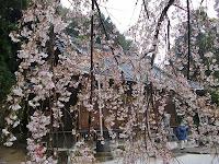 伊知多神社