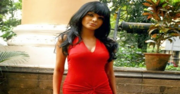 Hacked: Sherlyn Chopra Nude
