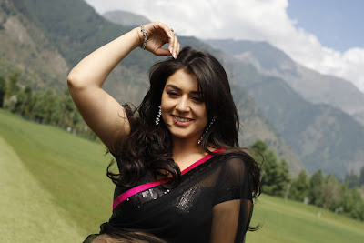 Hansika hot saree pics