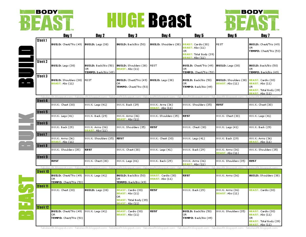 Body Beast | FabUless Fitness
