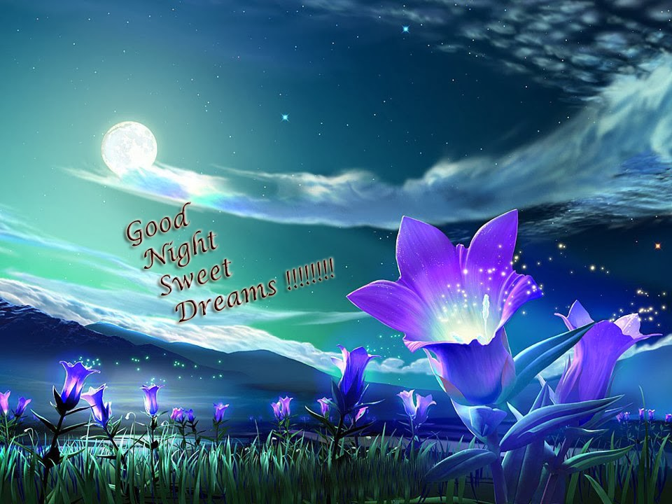 Beautiful Love Good Night Wallpaper : good night wallpaper love u miss u