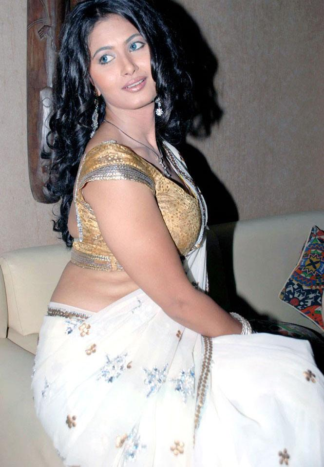 "Divya Dwivedi Hot Hq Backless Saree Blouse Pics ""savita Bhabhi"""