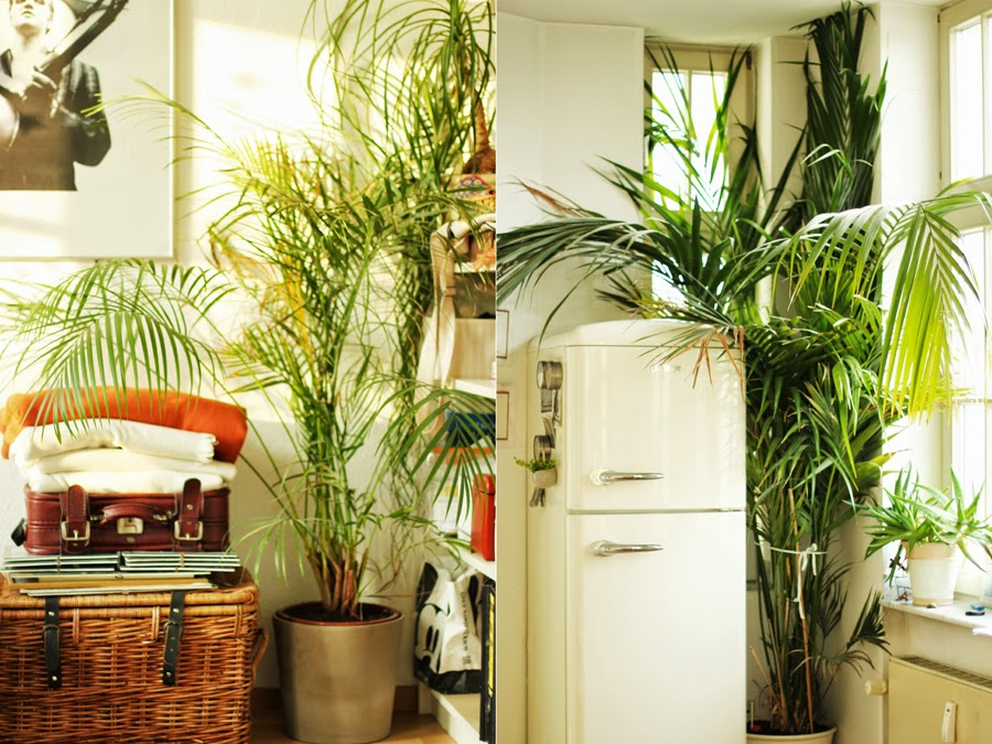 airbnb apartment köln