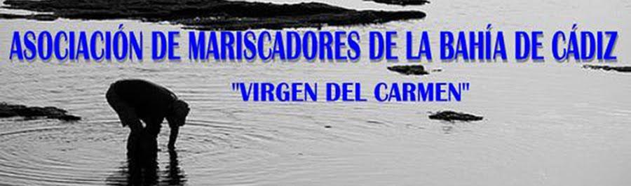 Mariscadores de la Bahía de Cádiz