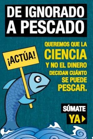 Reforma pesquera