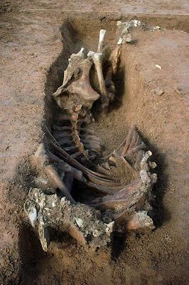 Prehistoric henge unearthed in Kent