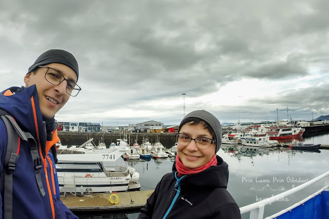 honeymoon-iceland-whale-harbour