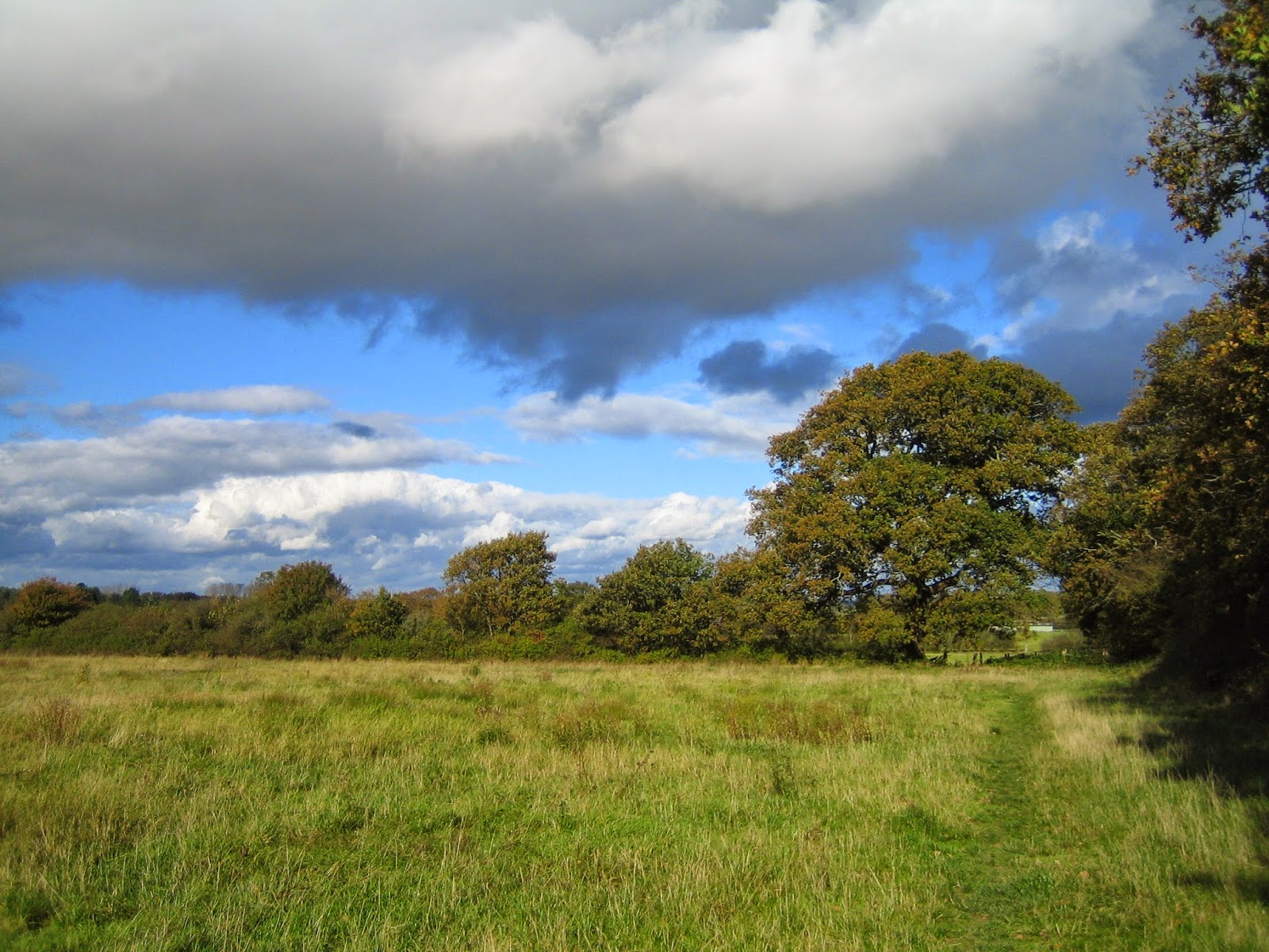 Friars Oak Fields skyscape 1