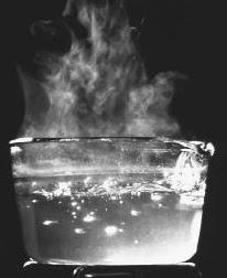 Cara Ampuh Hilangkan Komedo Dengan Bahan Tradisional | Blog Brema