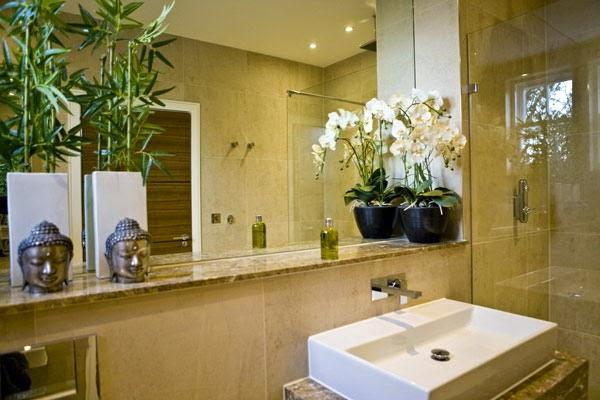 Arredo in piante per il bagno - Piante in bagno ...