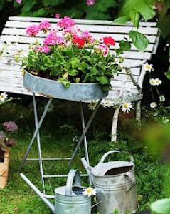 Trädgårdsbloggar indelade i växtzoner