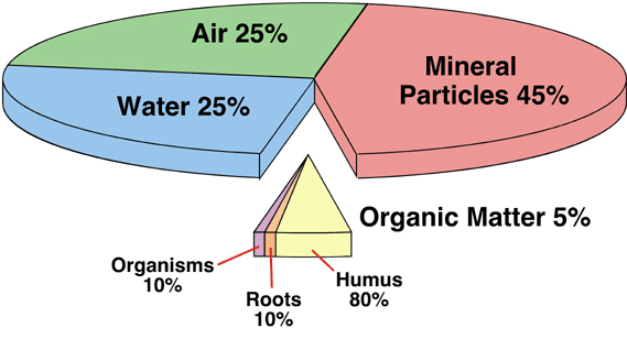 Got compost healthy soil is a balancing act for Define soil composition