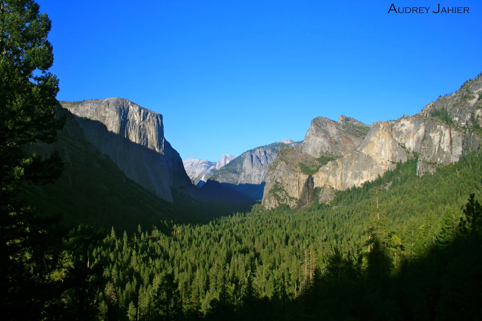 Yosemite-national-park-Roadtrip-USA