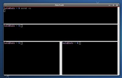 best linux terminal