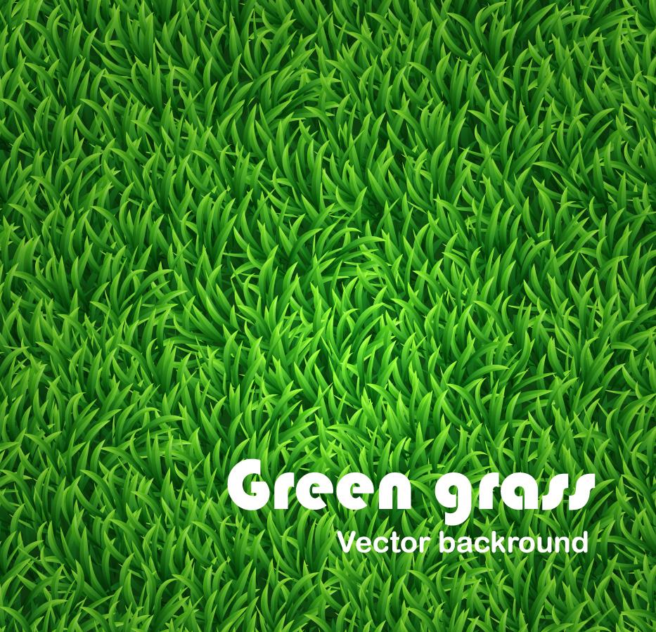 青々とした芝生の背景 Green grass vector background イラスト素材