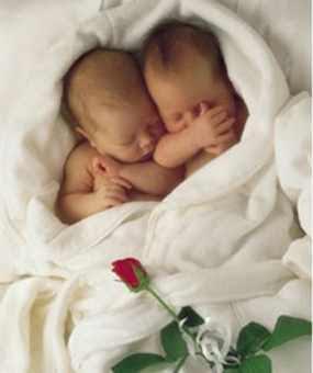 foto-bayi-kembar-imut