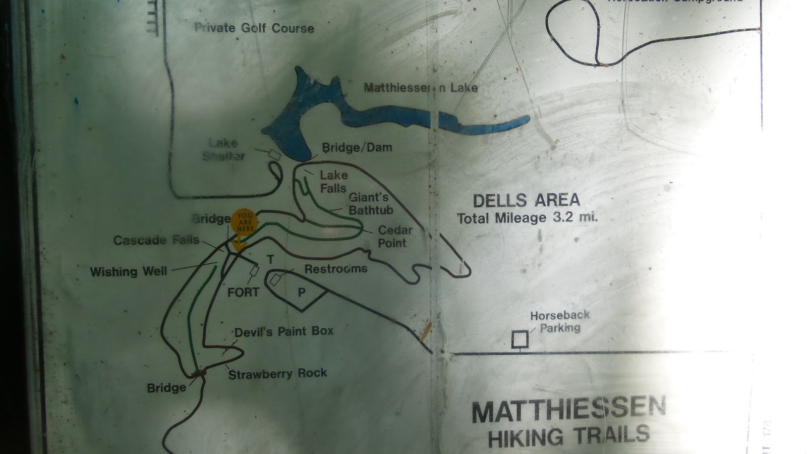 Hike With Edna: July 10th Matthiessen State Park