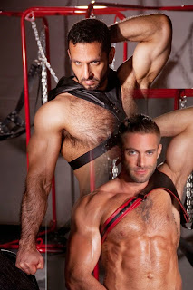 http://pakomx.blogspot.com/2014/12/pareja-en-accion-adam-champ-jake.html