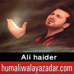 http://www.humaliwalayazadar.com/2014/02/ali-haider-nohay-2015.html