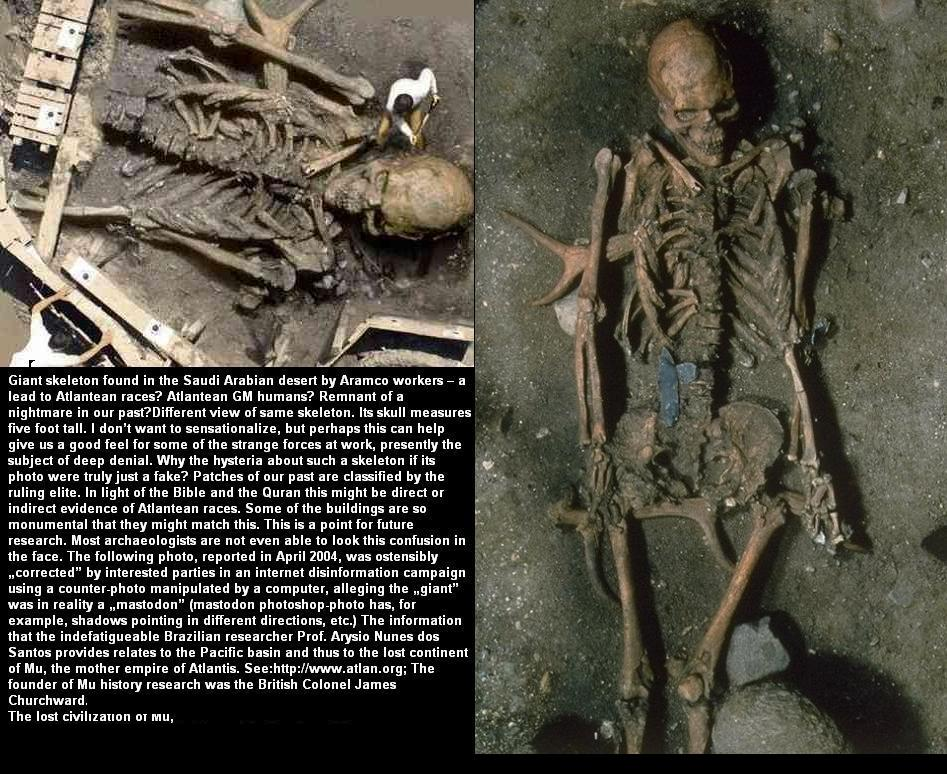 Real Giant Skeletons F...
