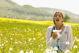 guide allergy symptoms seasonal