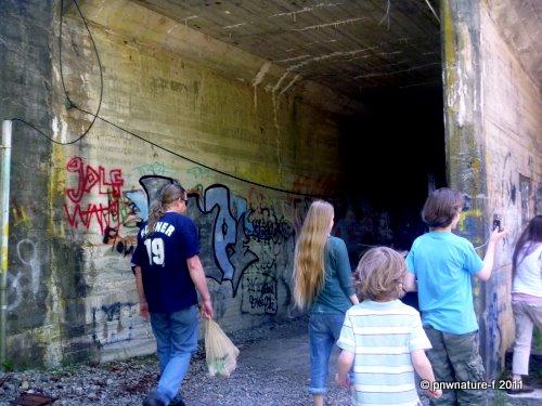 Sequalitchew Creek Trail In Dupont Wa
