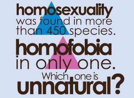 La homofobia no es natural