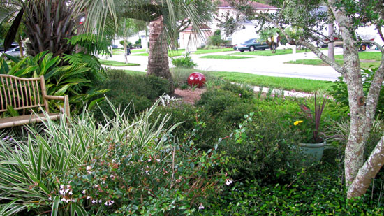 Florida native plant society blog grass free and deed for Landscaping rocks pinellas county