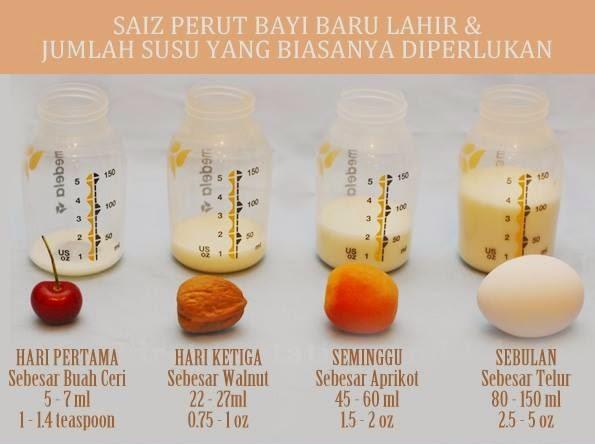 http://www.sihatnutrisi.com/2013/03/tips-penyusuan.html