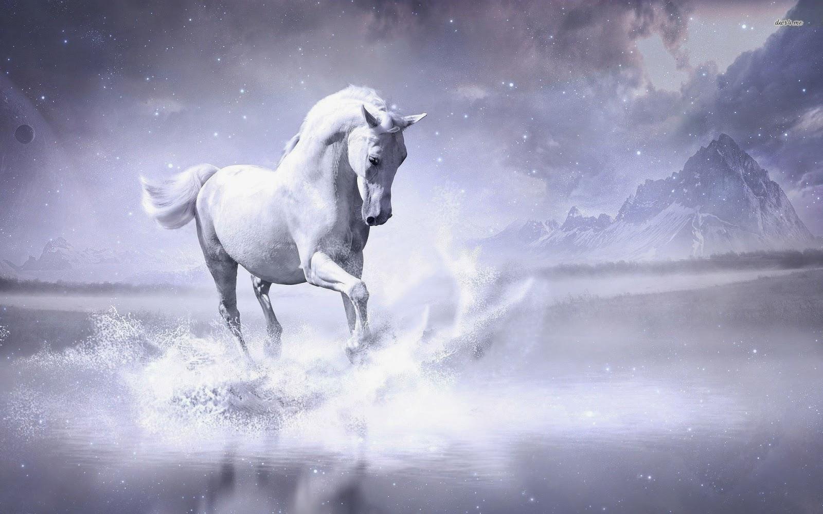 Best   Wallpaper Horse Art - 22937-white-horse-1920x1200-digital-art-wallpaper  Trends_667527.jpg