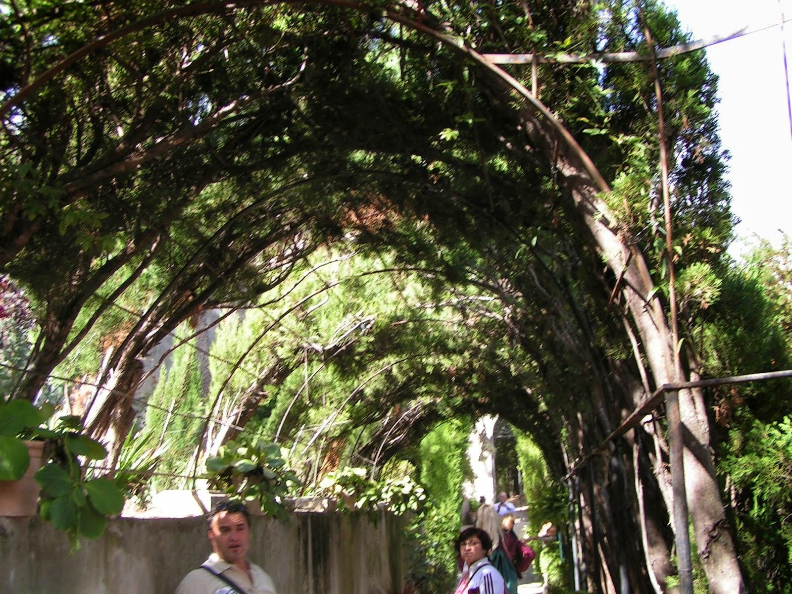 Jardin de Santos 2