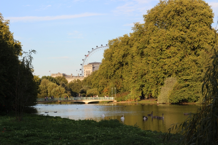 London Tourist where to visit go London Eye St James Park