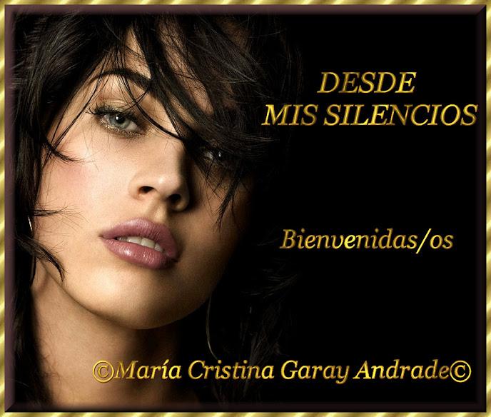 DESDE MIS SILENCIOS
