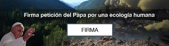 FIRMA Petición del Papa Francisco