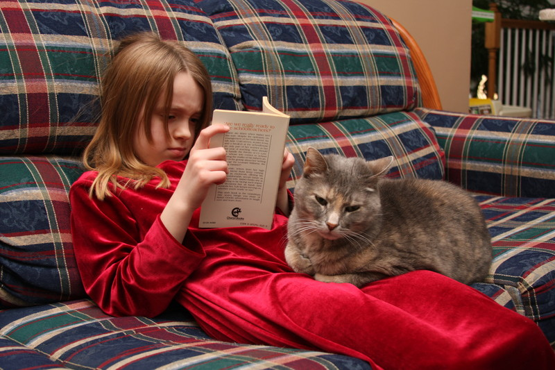 cat on girls lap while reading