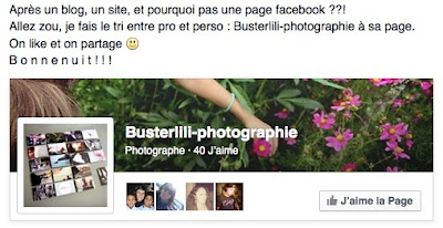 https://www.facebook.com/busterlili?ref=hl