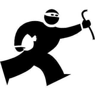 iPad Mini thief