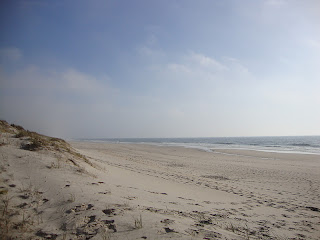 Osso da Baleia beach sand and sea photo - Pombal