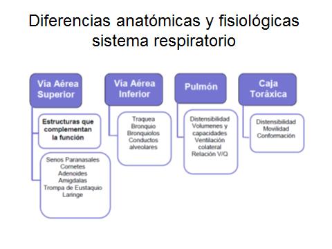 SALUD INTEGRAL Y BIOENERGETICA\