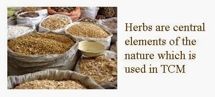pdf wild herbs tcm five elements
