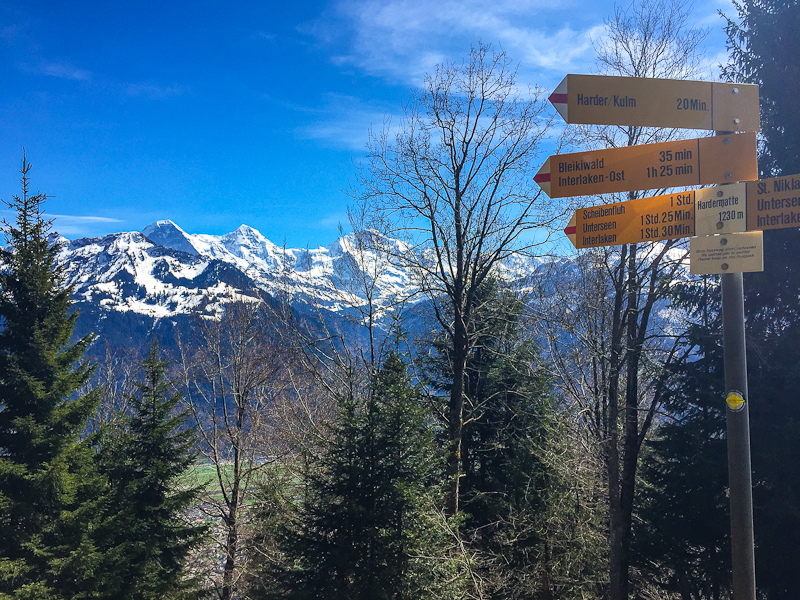 Swiss alps and route signs while hiking Harder Klum in Interlaken Switzerland