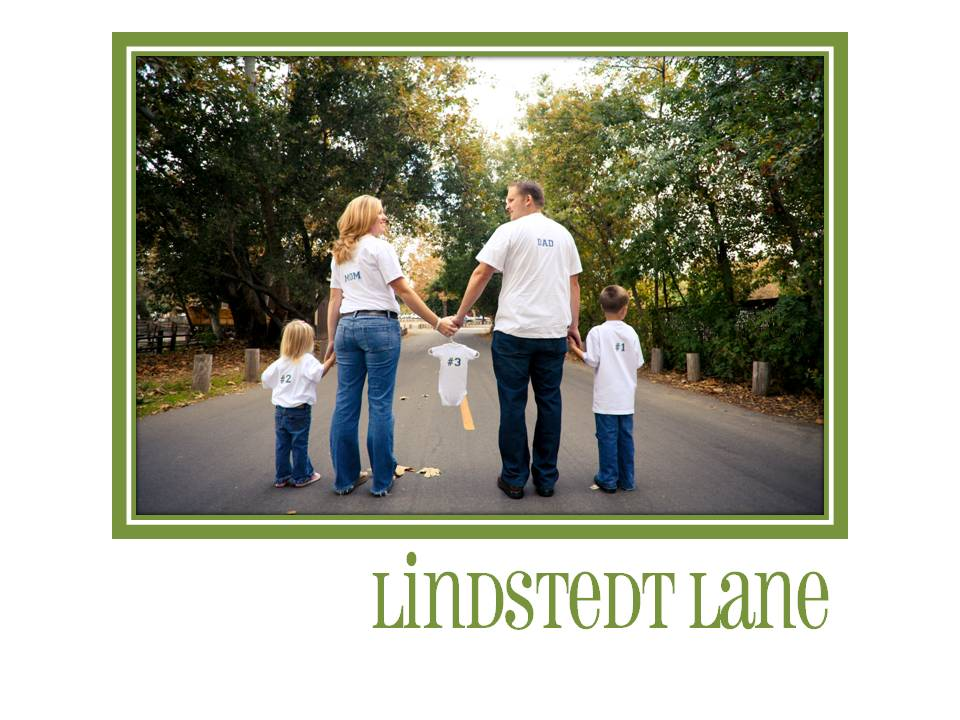 The Lindstedt Family