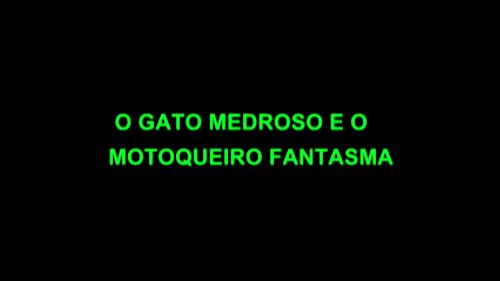 VIDEOS LEGAIS DO WHATSAPP ! O GATO MEDROSO E O MOTOQUEIRO FANSTAMA