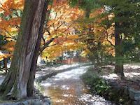 秀峰神山(こうやま)よりいずる清き御手洗川が流れる。